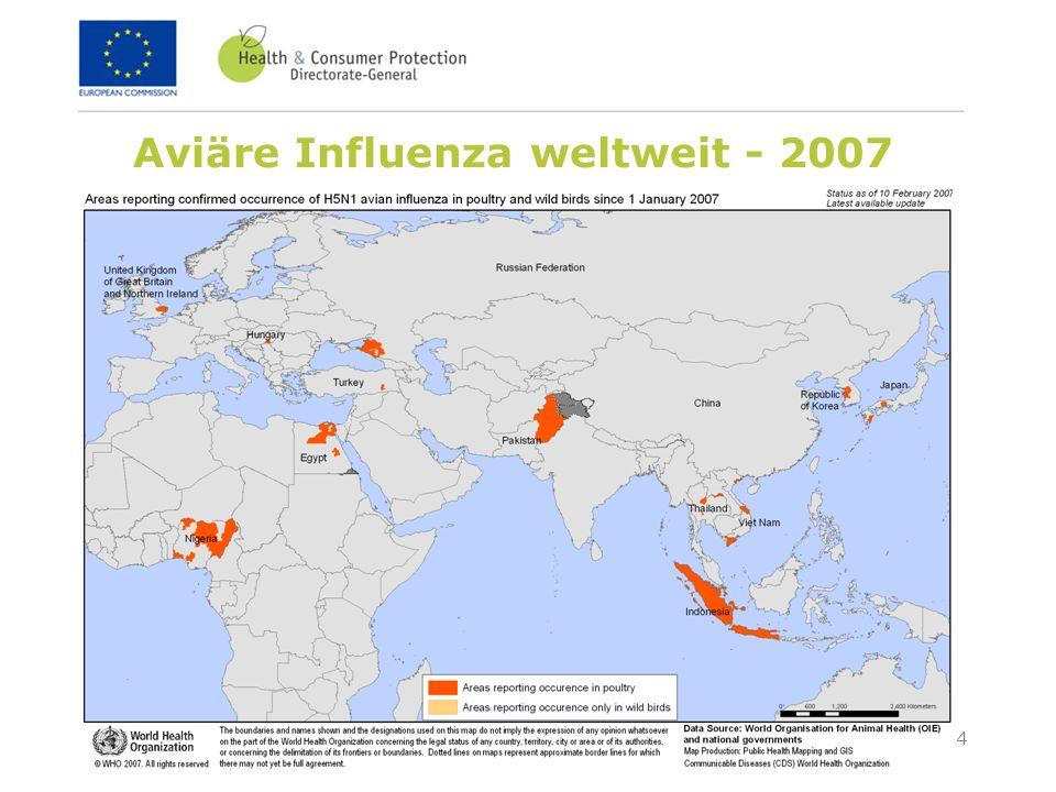 Aviäre Influenza weltweit - 2007