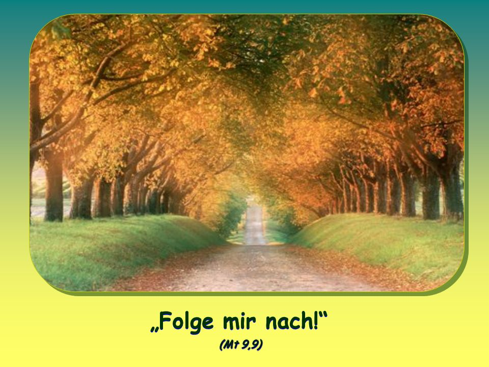 """Folge mir nach! (Mt 9,9)"