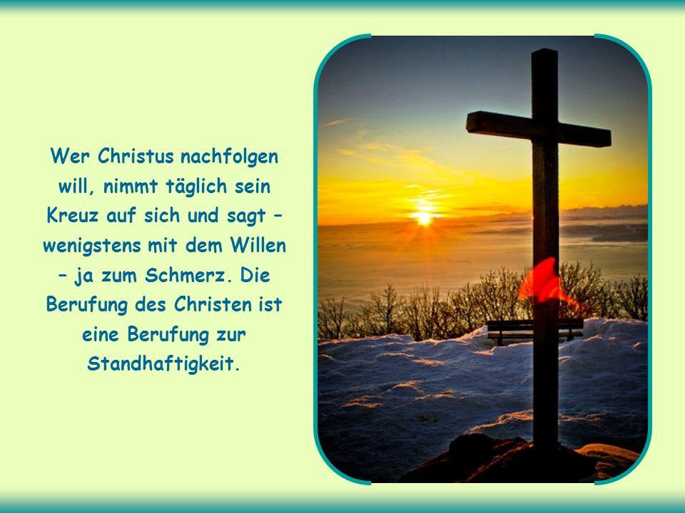 Wer Christus nachfolgen will, nimmt täglich sein Kreuz auf sich und sagt – wenigstens mit dem Willen – ja zum Schmerz.