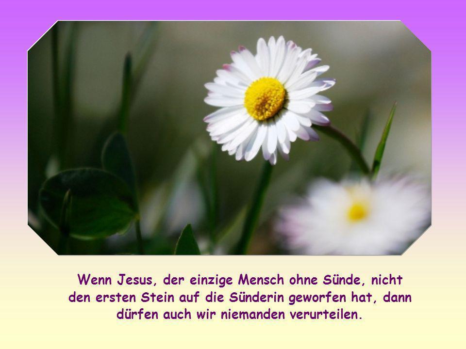 Wenn Jesus, der einzige Mensch ohne Sünde, nicht den ersten Stein auf die Sünderin geworfen hat, dann dürfen auch wir niemanden verurteilen.