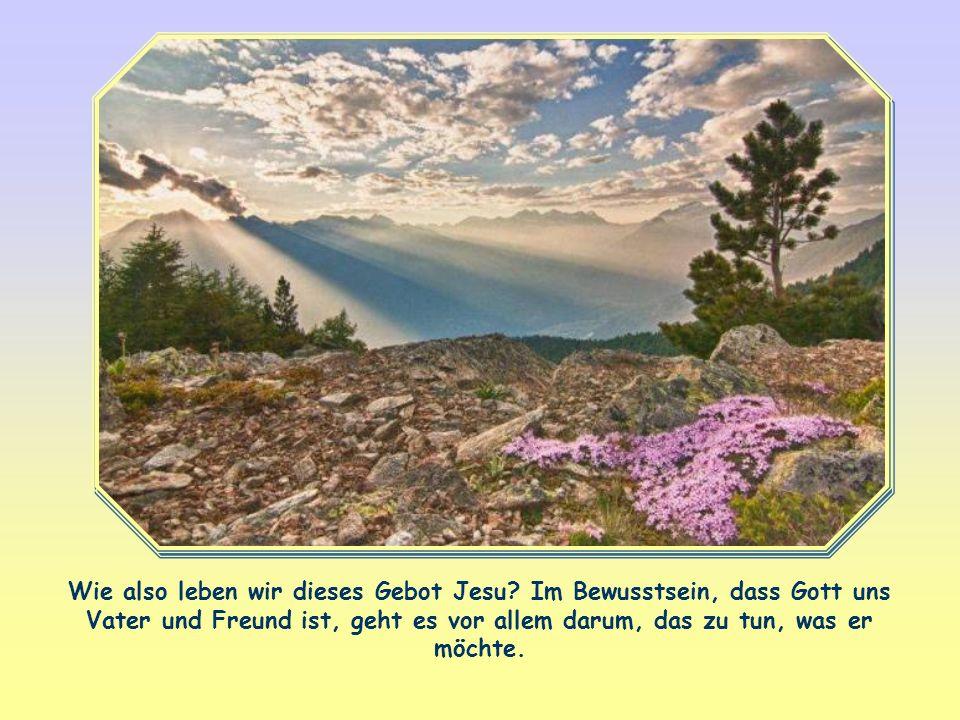 Wie also leben wir dieses Gebot Jesu