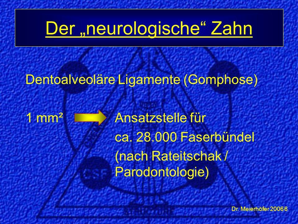 "Der ""neurologische Zahn"