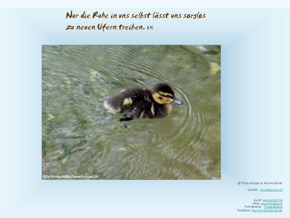 Nur die Ruhe in uns selbst lässt uns sorglos zu neuen Ufern treiben. A