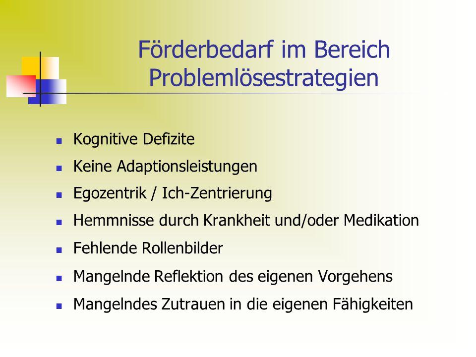 Förderbedarf im Bereich Problemlösestrategien