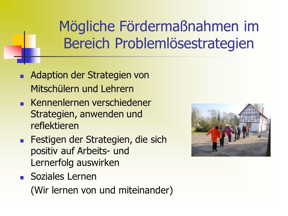 Mögliche Fördermaßnahmen im Bereich Problemlösestrategien