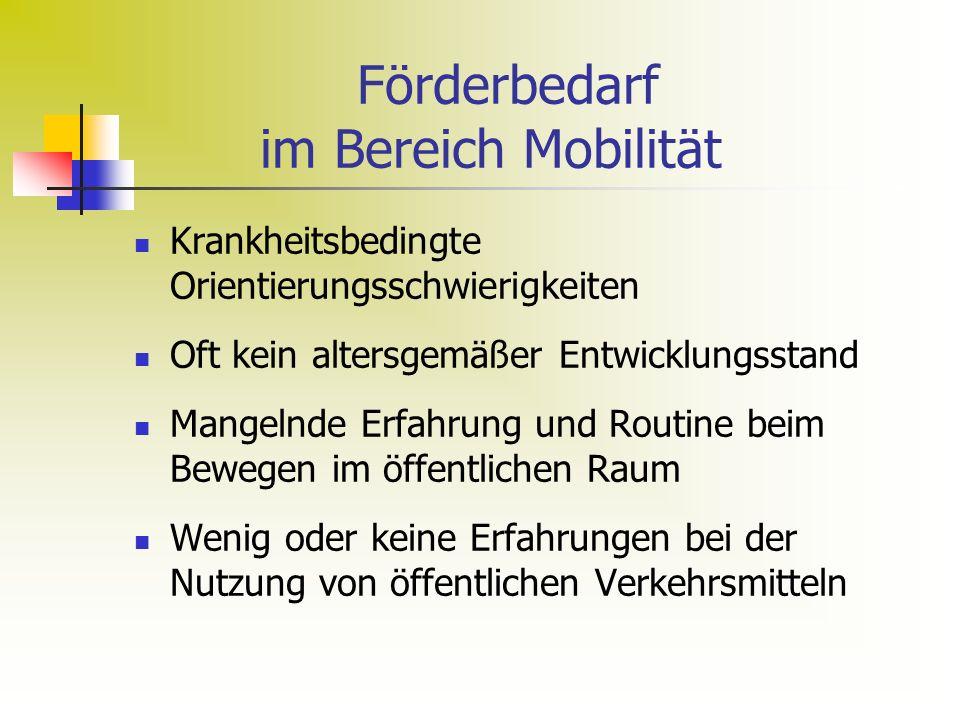 Förderbedarf im Bereich Mobilität