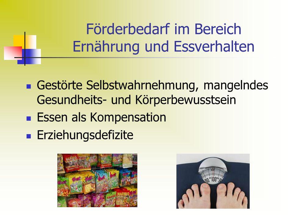 Förderbedarf im Bereich Ernährung und Essverhalten