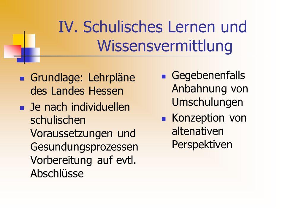 IV. Schulisches Lernen und Wissensvermittlung