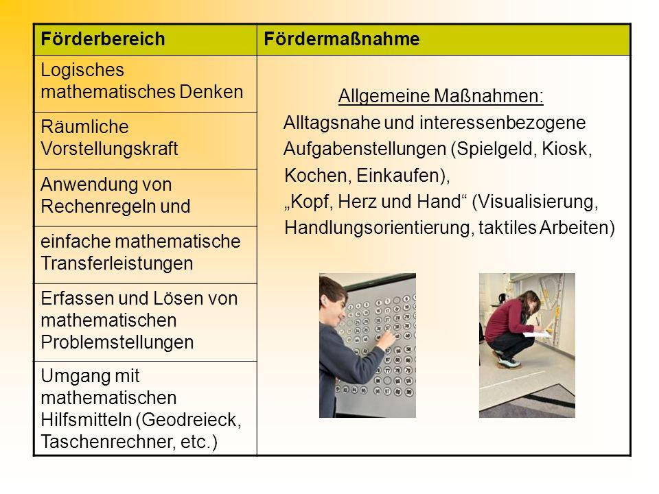 Förderbereich Fördermaßnahme. Logisches mathematisches Denken. Allgemeine Maßnahmen: Alltagsnahe und interessenbezogene.