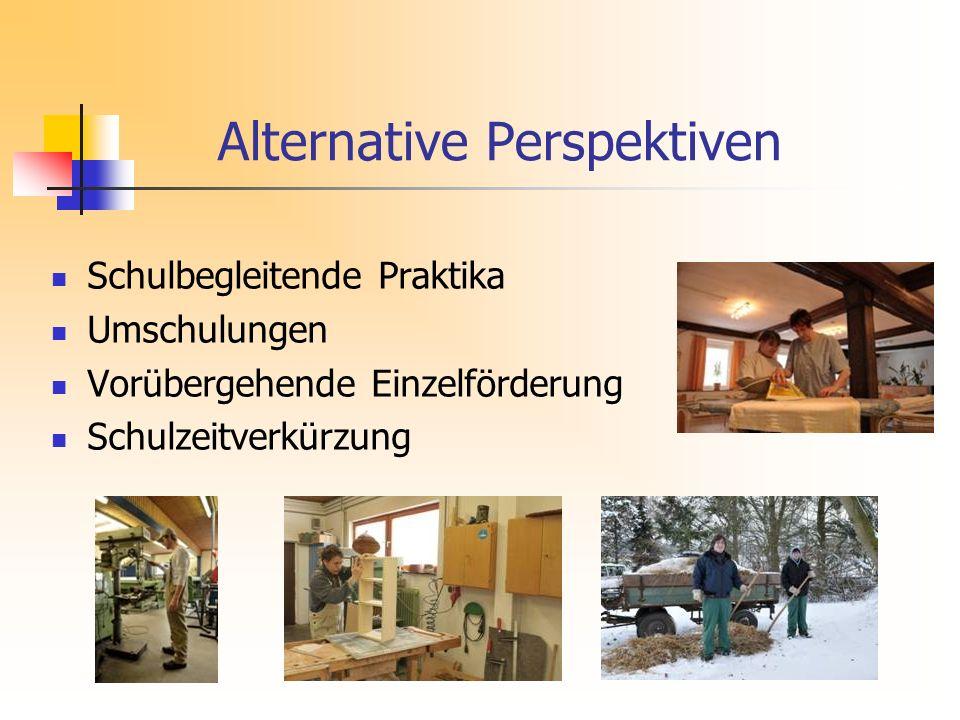 Alternative Perspektiven