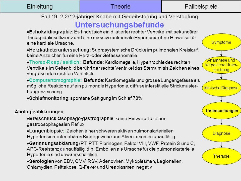 Einleitung Theorie Fallbeispiele