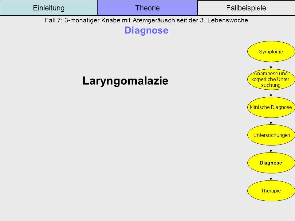 Laryngomalazie Einleitung Theorie Fallbeispiele