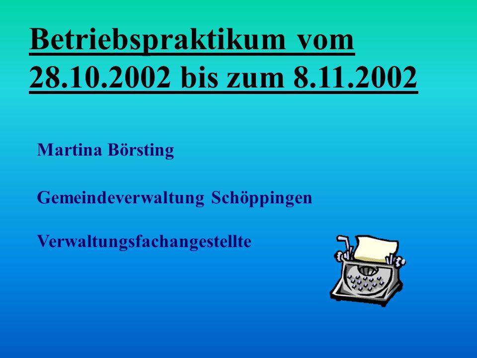 Betriebspraktikum vom 28.10.2002 bis zum 8.11.2002