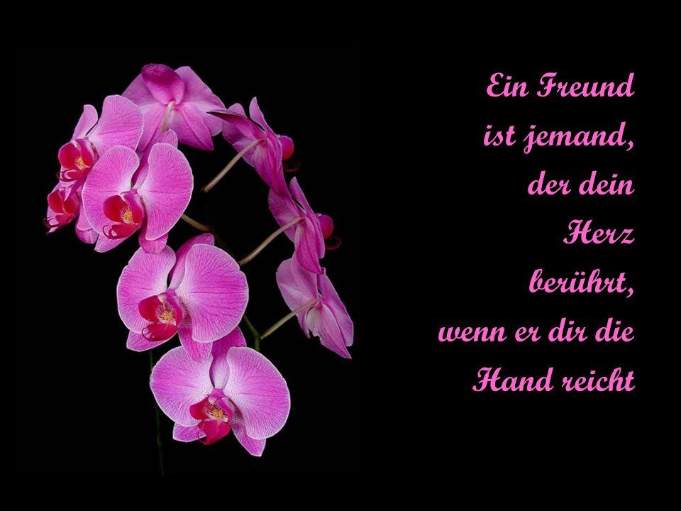 Ein Freund ist jemand, der dein Herz berührt, wenn er dir die Hand reicht