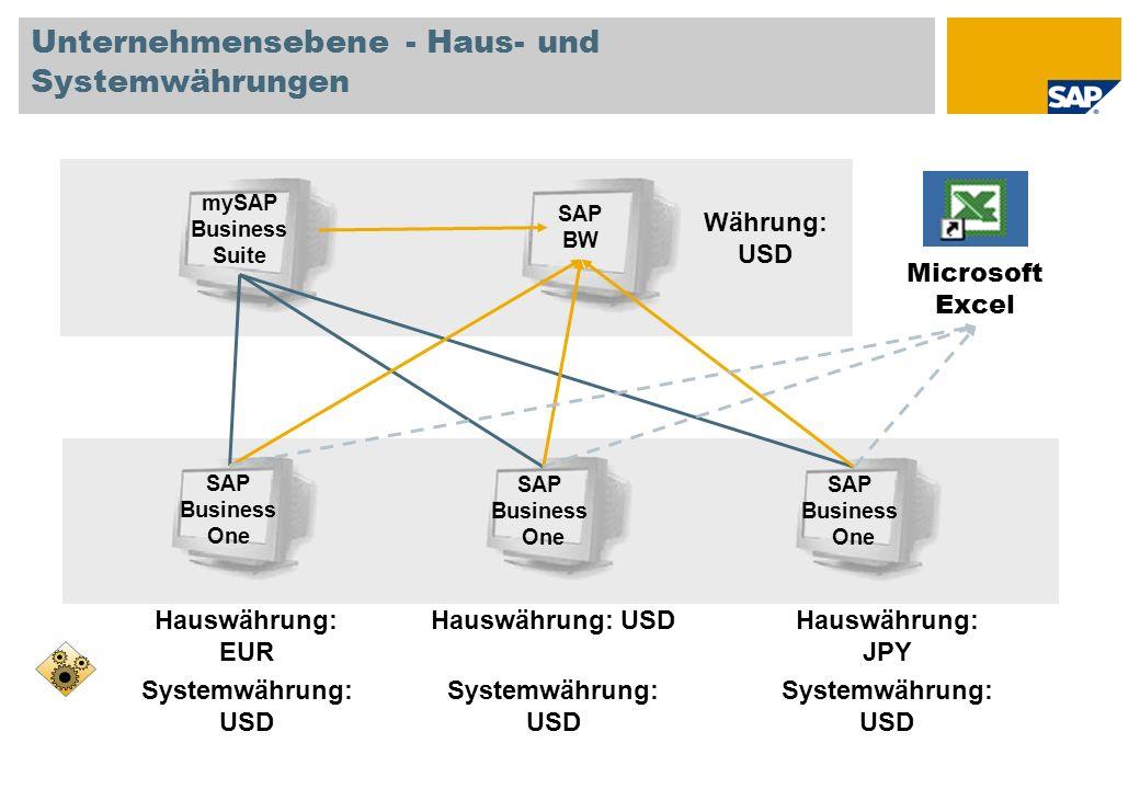 Unternehmensebene - Haus- und Systemwährungen