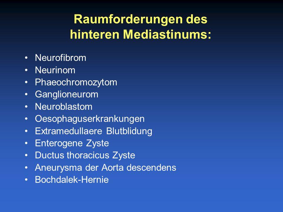 hinteren Mediastinums:
