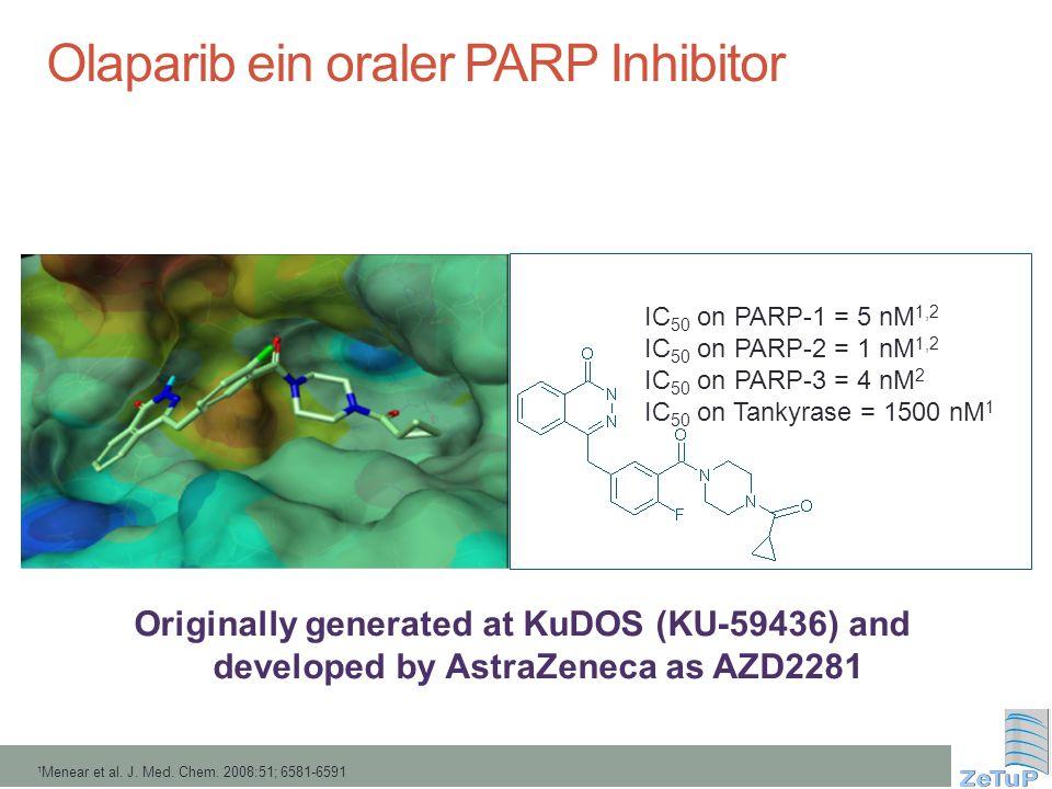 Olaparib ein oraler PARP Inhibitor