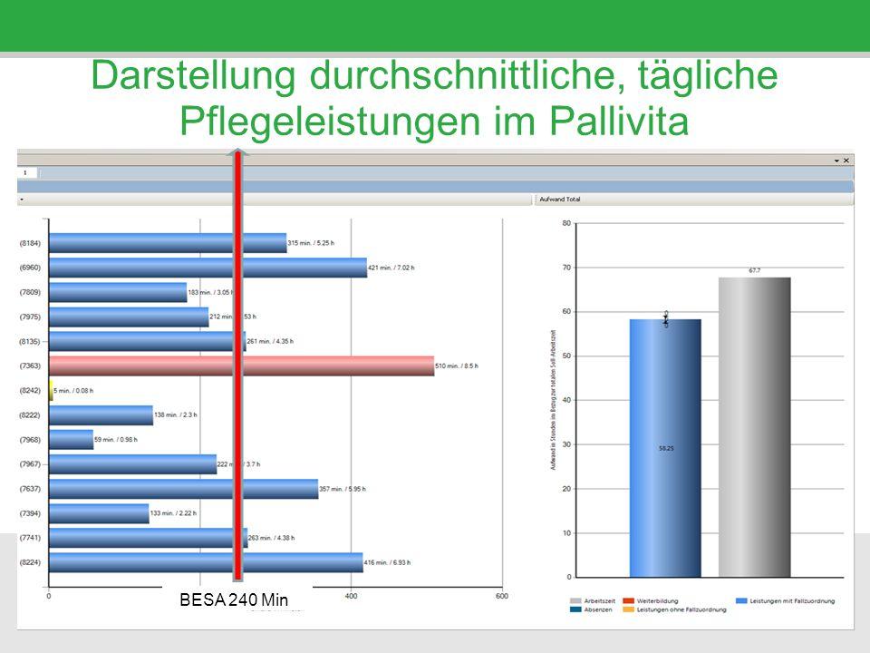 Darstellung durchschnittliche, tägliche Pflegeleistungen im Pallivita