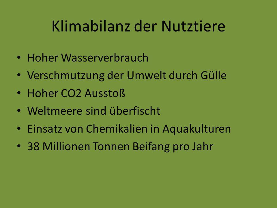 Klimabilanz der Nutztiere