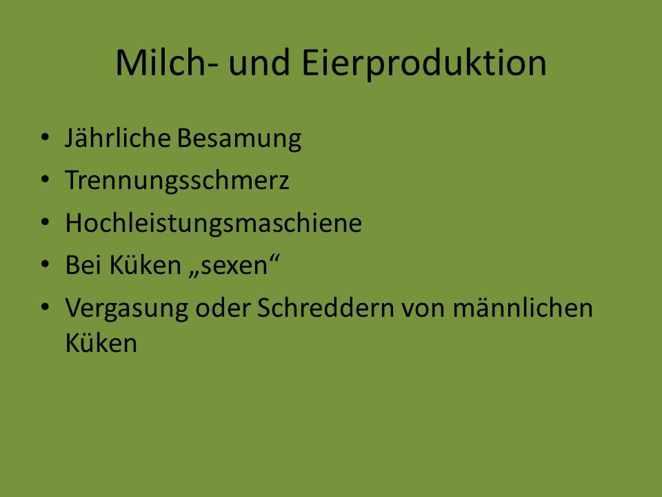 Milch- und Eierproduktion