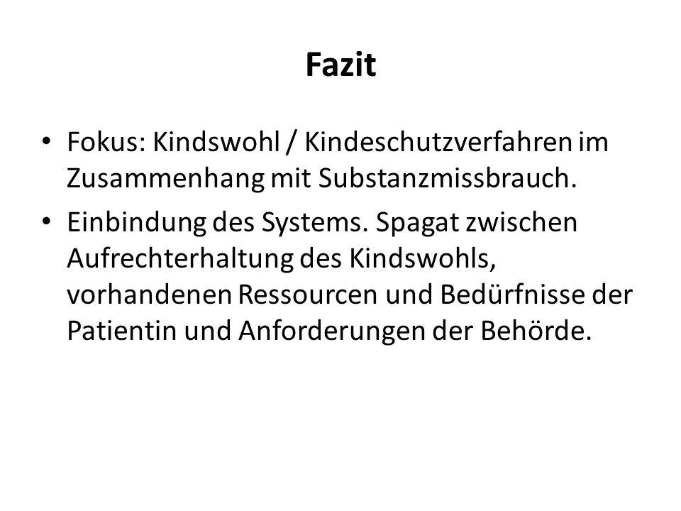 Fazit Fokus: Kindswohl / Kindeschutzverfahren im Zusammenhang mit Substanzmissbrauch.