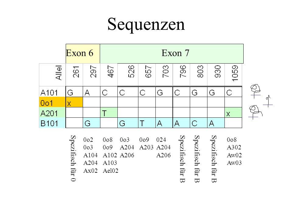 Sequenzen Exon 6 Exon 7 Spezifisch für 0 Spezifisch für B