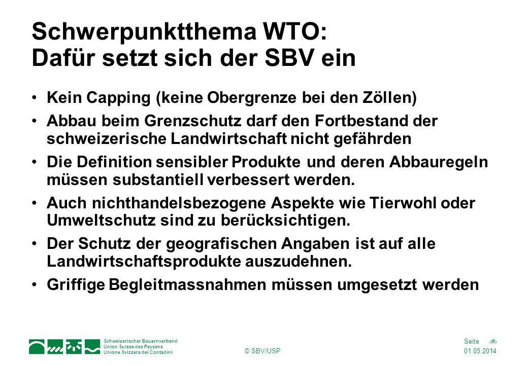 Schwerpunktthema WTO: Dafür setzt sich der SBV ein