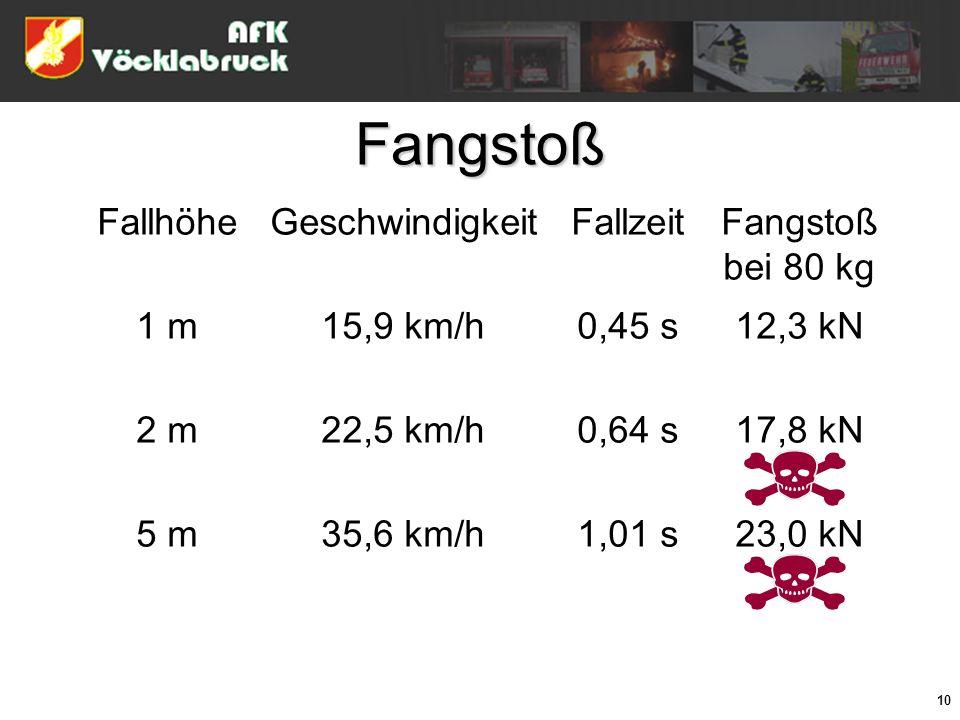 Fangstoß Fallhöhe Geschwindigkeit Fallzeit Fangstoß bei 80 kg 1 m
