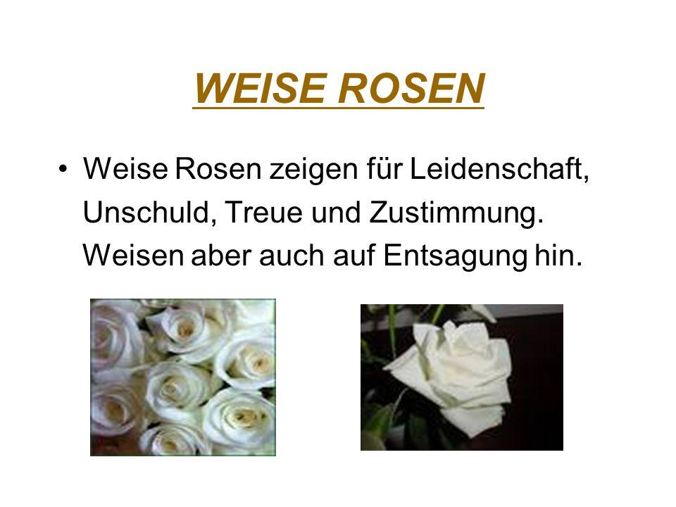 WEISE ROSEN Weise Rosen zeigen für Leidenschaft,
