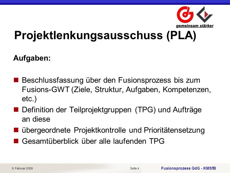 Projektlenkungsausschuss (PLA)