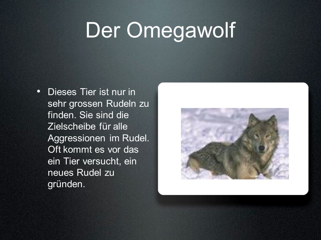Der Omegawolf