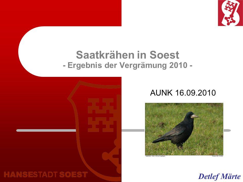 Saatkrähen in Soest - Ergebnis der Vergrämung 2010 -