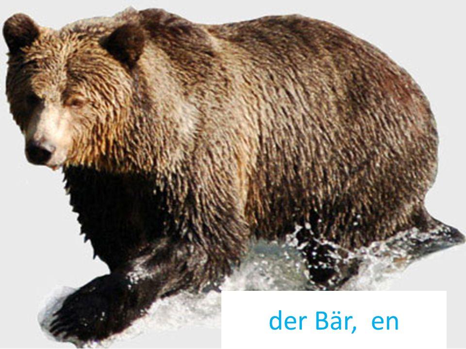 der Bär, en
