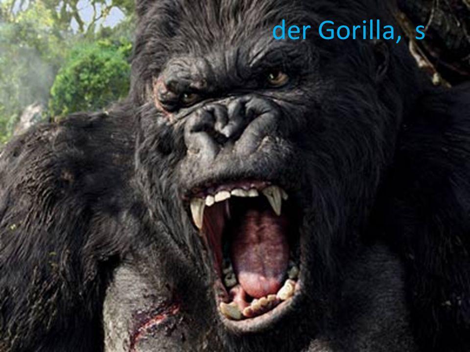 der Gorilla, s