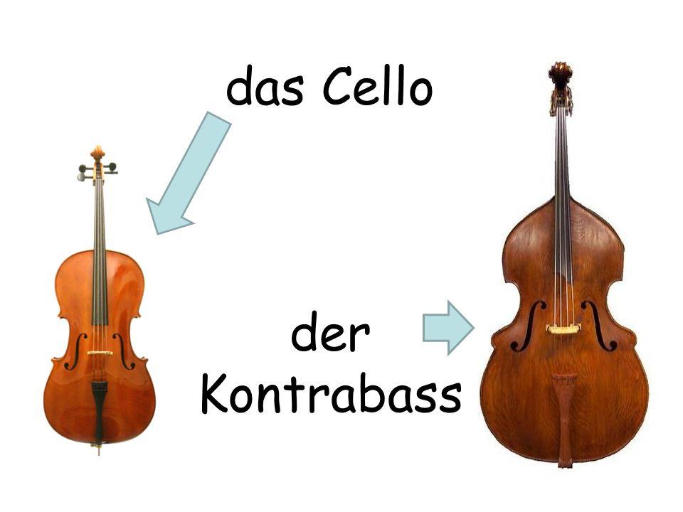 das Cello der Kontrabass