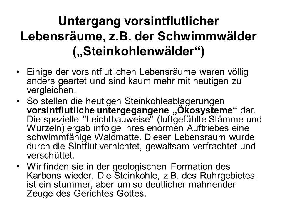 Untergang vorsintflutlicher Lebensräume, z. B