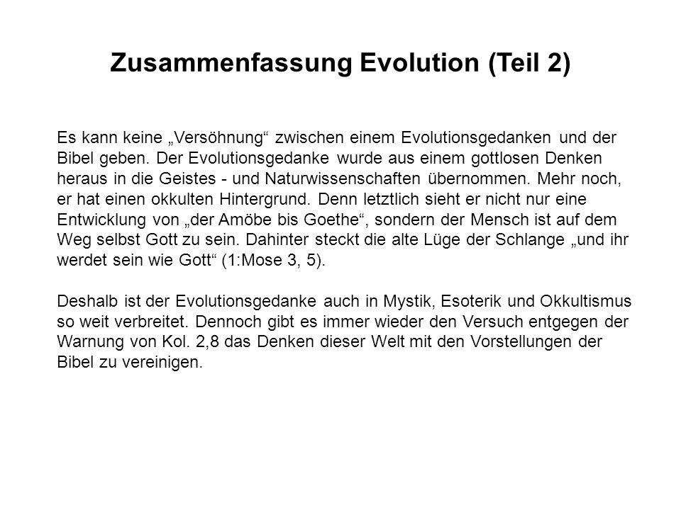 Zusammenfassung Evolution (Teil 2)