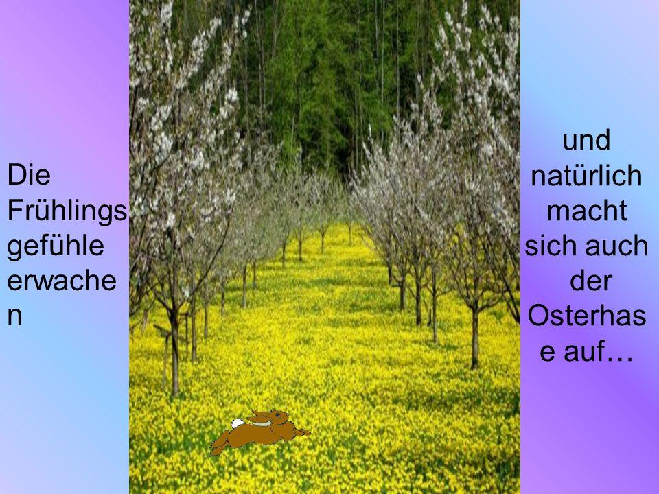 und natürlich macht sich auch der Osterhase auf…