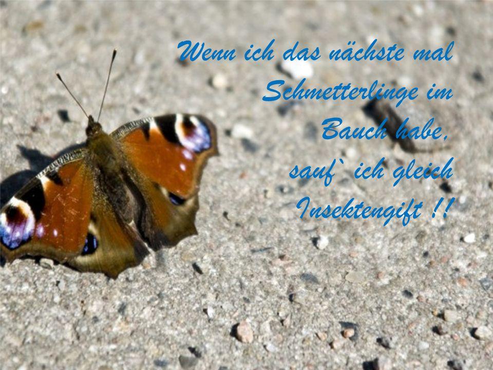 Wenn ich das nächste mal Schmetterlinge im Bauch habe, sauf` ich gleich Insektengift !!