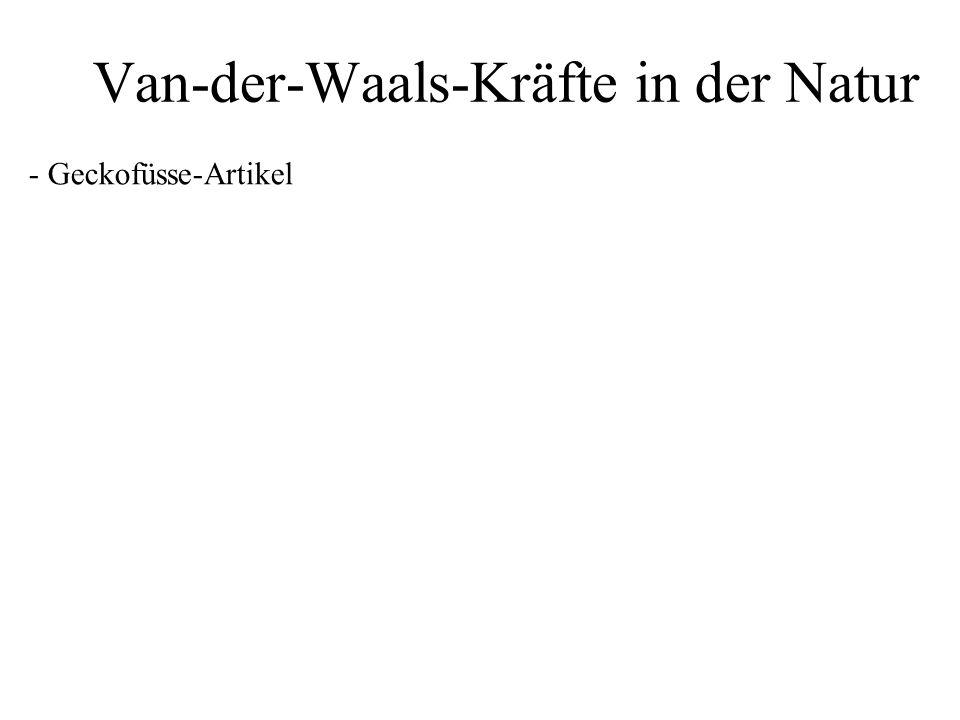 Van-der-Waals-Kräfte in der Natur