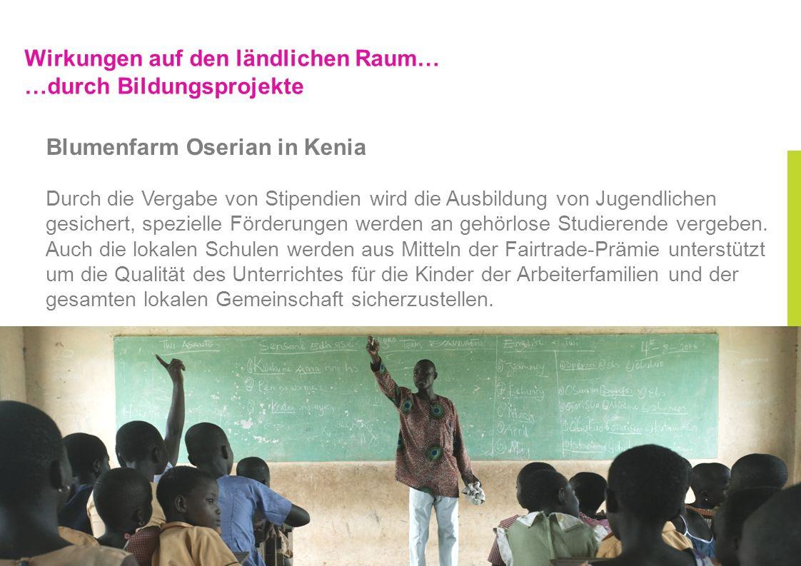 Wirkungen auf den ländlichen Raum… …durch Bildungsprojekte