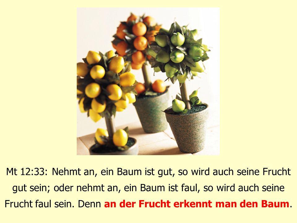 Mt 12:33: Nehmt an, ein Baum ist gut, so wird auch seine Frucht gut sein; oder nehmt an, ein Baum ist faul, so wird auch seine Frucht faul sein.