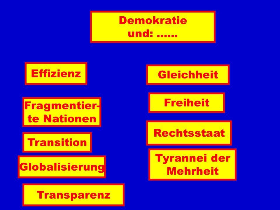 Demokratie und: …... Effizienz. Gleichheit. Freiheit. Fragmentier- te Nationen. Rechtsstaat. Transition.