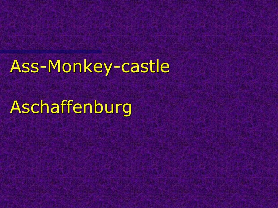 Ass-Monkey-castle Aschaffenburg