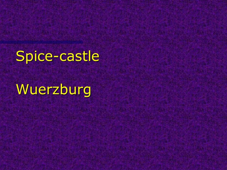 Spice-castle Wuerzburg
