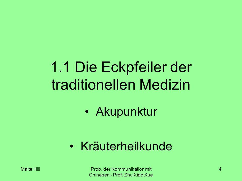 1.1 Die Eckpfeiler der traditionellen Medizin