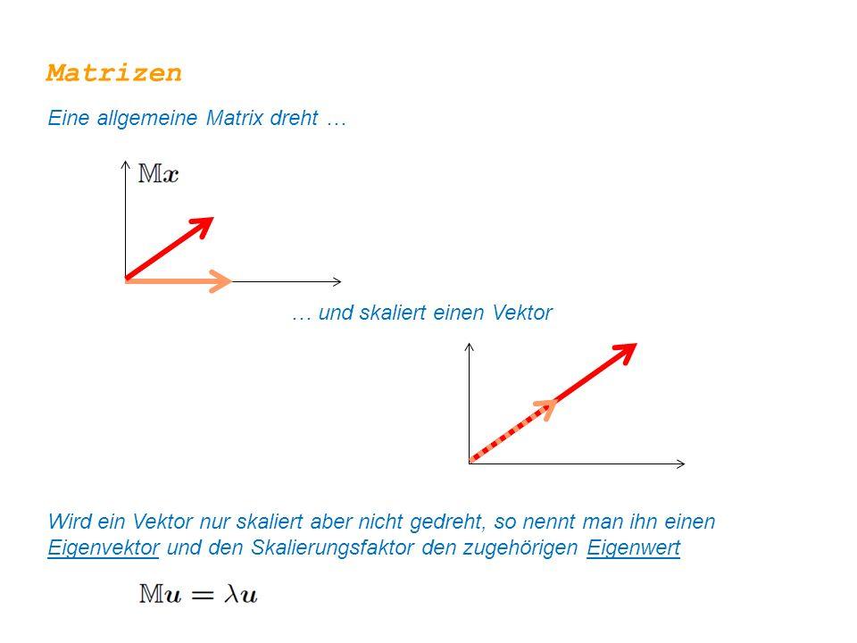 Matrizen Eine allgemeine Matrix dreht … … und skaliert einen Vektor