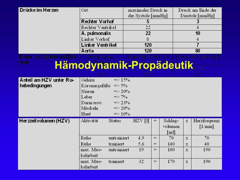 Hämodynamik-Propädeutik