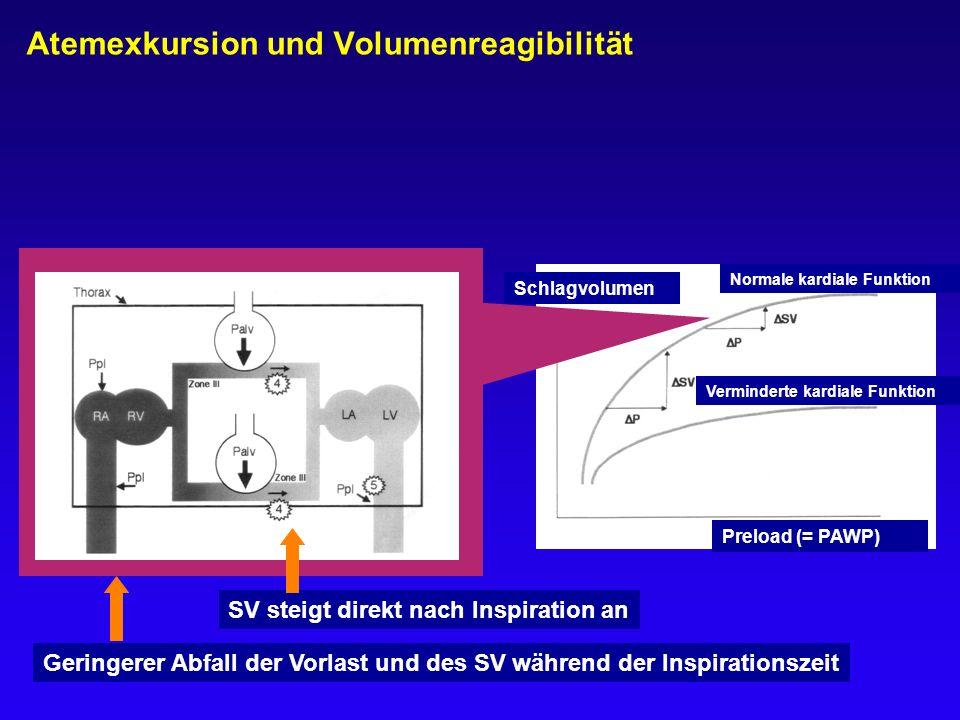 Atemexkursion und Volumenreagibilität