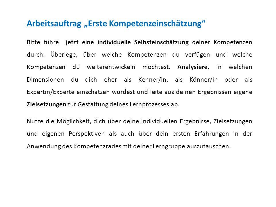 """Arbeitsauftrag """"Erste Kompetenzeinschätzung"""
